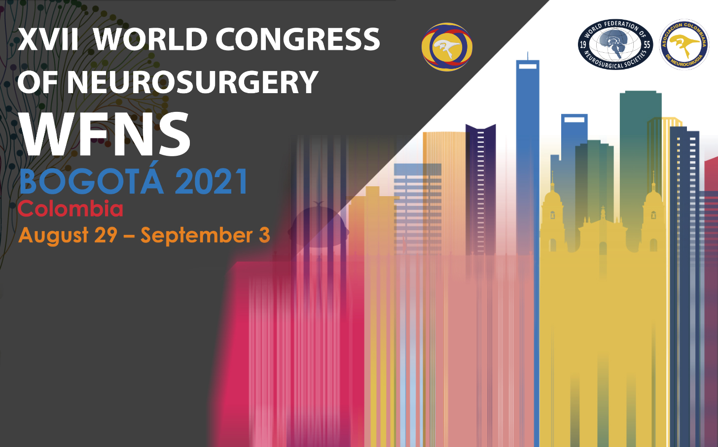 WFNS2021 Bogota SENEPE Sociedad Española de Neurocirugía Pediátrica